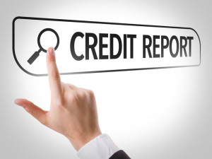 Credit Report Search